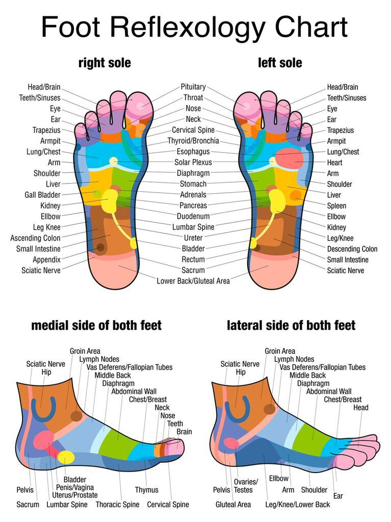 Reflexology Massage Points Plantar Sole